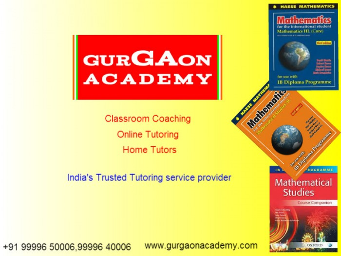 IB Diploma Maths Physics Coaching Institute-Gurgaon Academy
